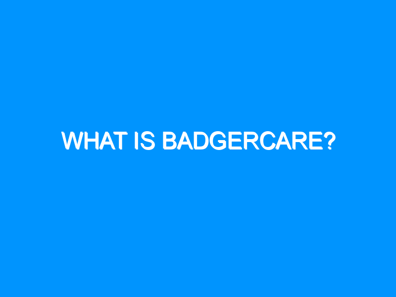 What is Badgercare?