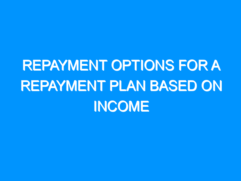 Repayment Options for a Repayment Plan Based on Income